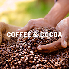 Coffee & cocoa. Learn more.